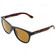 Cairn James sunglasses, Black Tortoise