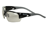 Demon Iron Photochromatic sunglasses, black/grey