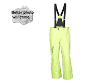 Spyder Dare Tailored Fit mens ski pants, Green