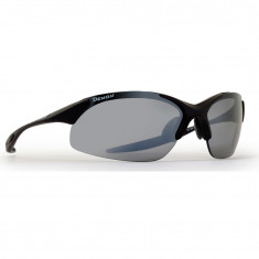 Demon 832 Dchange, sunglasses, matt black